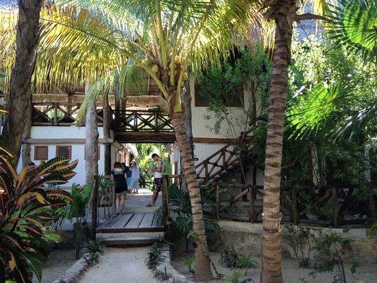 Xaloc Resort:                   comedor, area de lectura
