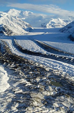 Expeditions Alaska: Dayhikes and Private Tours