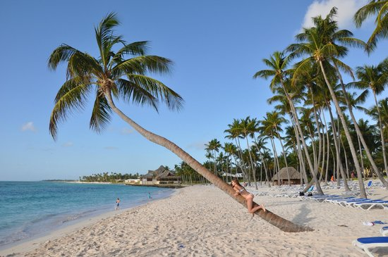 Club Med Punta Cana:                   Famous Palm