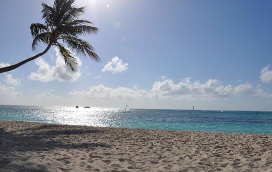 Club Med Punta Cana:                   Sunrise