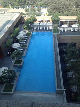 Crowne Plaza Hotel Gurgaon :                   nice long pool