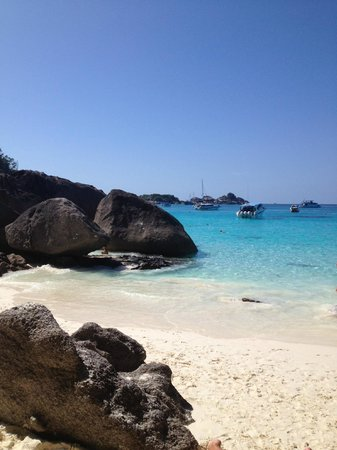 Similan Islands National Park:                   spiaggia bianca