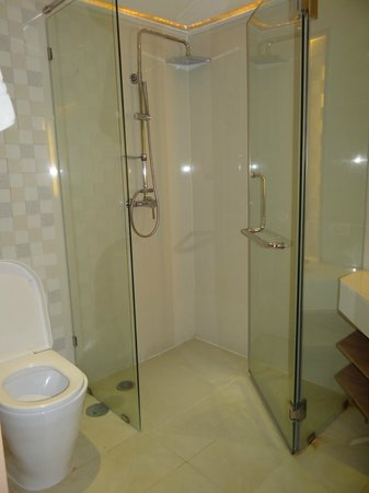 Centara Pattaya Hotel:                   Glass box Shower