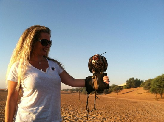 Al Maha, A Luxury Collection Desert Resort & Spa:                   Early morning falcon exhibit.