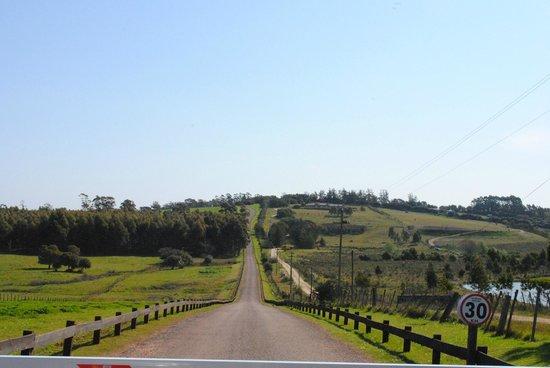 Hotel Fasano Punta del Este:                   El camino de entrada a Fassano