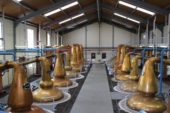 Glenfiddich Distillery:                   Le graal