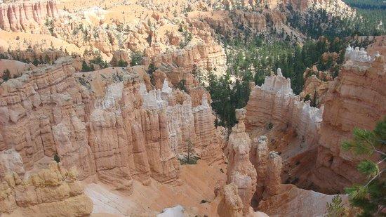 Grand Canyon South Rim:                   Impresionantes vistas