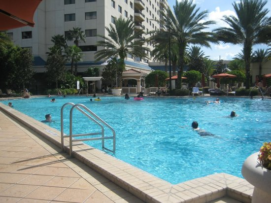 Renaissance Orlando Resort at SeaWorld:                   Main pool area