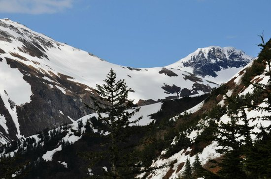 Timberline Bar & Grill:                   one of the scenic views from the restaurant