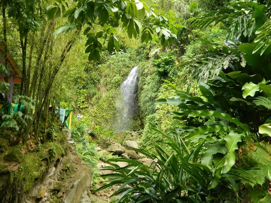 Cosol Tours:                   Nice waterfall