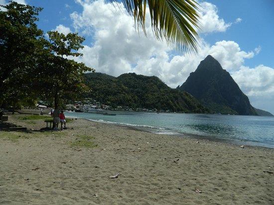 Cosol Tours:                   Beach scene