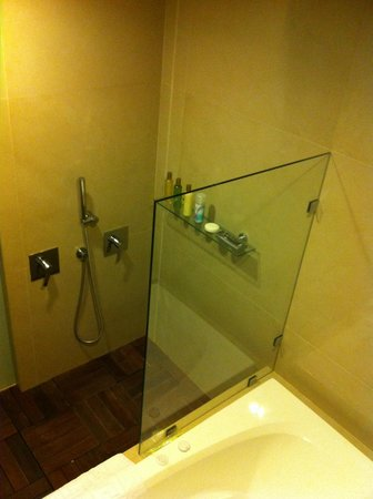 Secrets Huatulco Resort & Spa:                   Great shower! Large shower head on ceiling and then another going into your ba