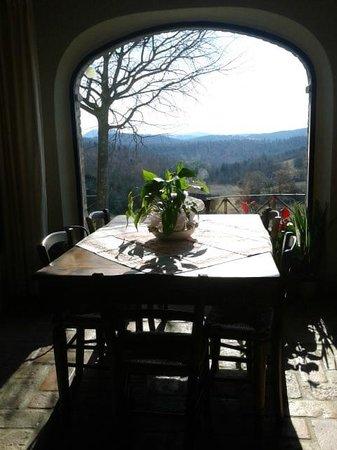 Podere Alberese:                   vista dal tavolo della colazione                 