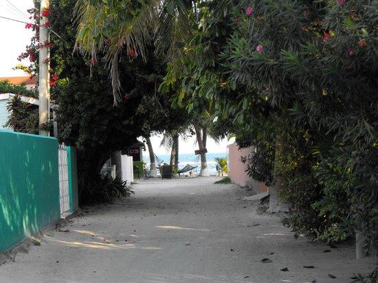 Caye Caulker:                   Street view