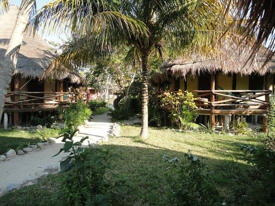 Hotel Villas Delfines:                   Bungalows from garden