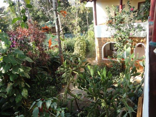 Claus Garden:                   garden