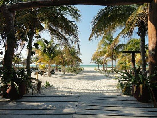 Hotel Villas Delfines:                   Seaview from reception