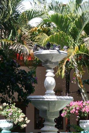 達里奧酒店照片