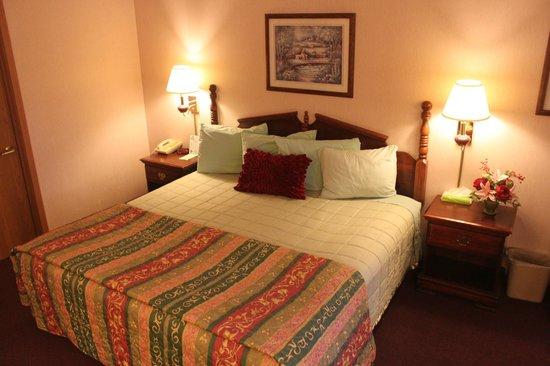 Scenic Hills Inn: King Room