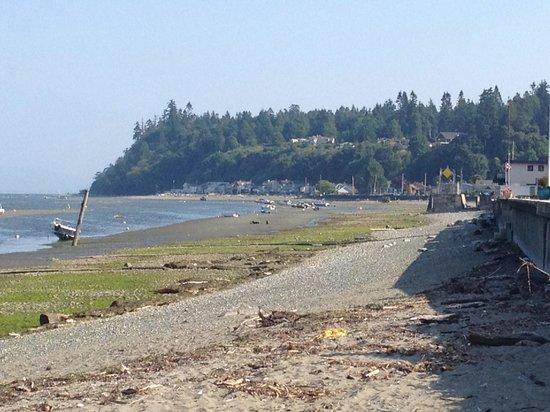 Centennial Beach:                   Beach Front Trek