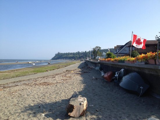Centennial Beach:                   Boundary Bay Borderline