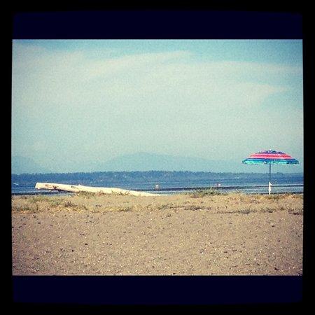写真Centennial Beach枚