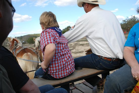 Rancho Cortez Day Trips:                   Driving the Belgin horse team on the wagon ride.