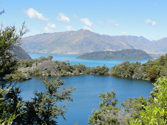 Eco Wanaka Adventures:                   View from Mou Waho