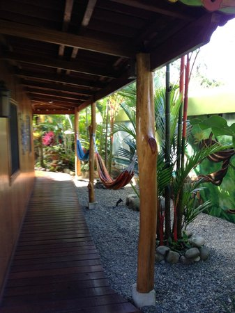 Physis Caribbean Bed & Breakfast:                   Hammocks!