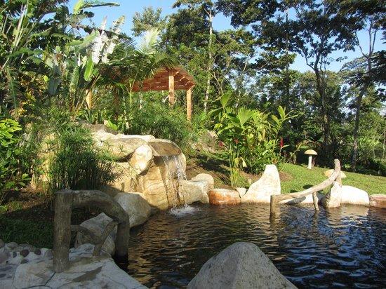 Hotel El Silencio del Campo:                   Silencio del Campo Hot Springs & Waterfall