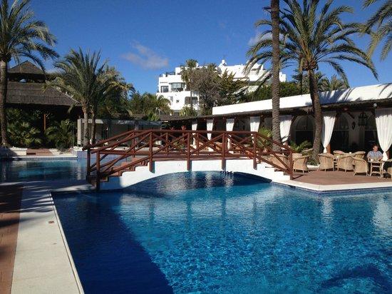 Melia Marbella Banus:                   La piscina de la Terraza