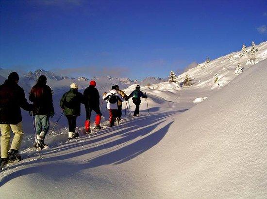 Alpe d'Huez Grand Domaine Ski Photo