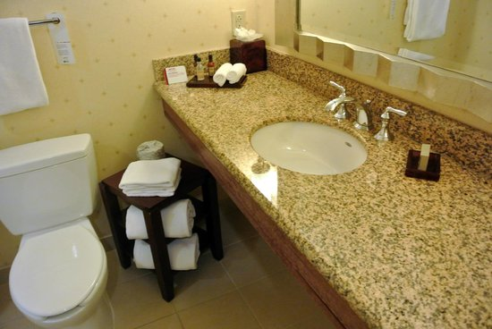 Newport News Marriott at City Center:                   Bathroom
