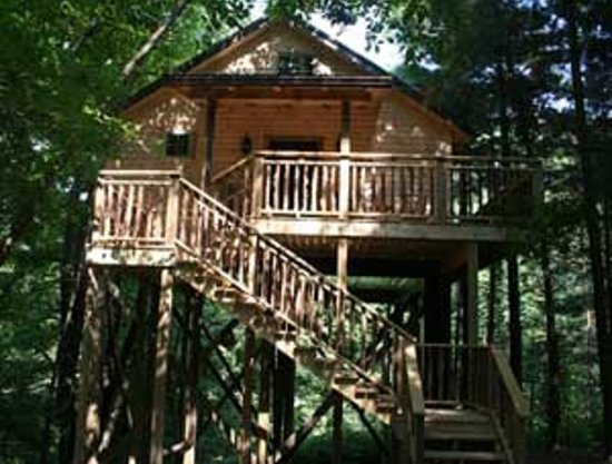 Amish Country Lodging: Treehouse Cabins at Pine Cove Lodging