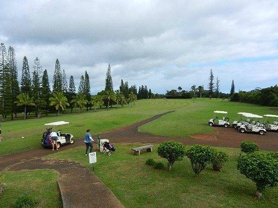 Garden Island Inn:                   Golfing - 9 holes