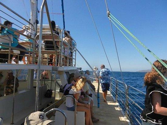 Garden Island Inn:                   Blue Dolphin Charters