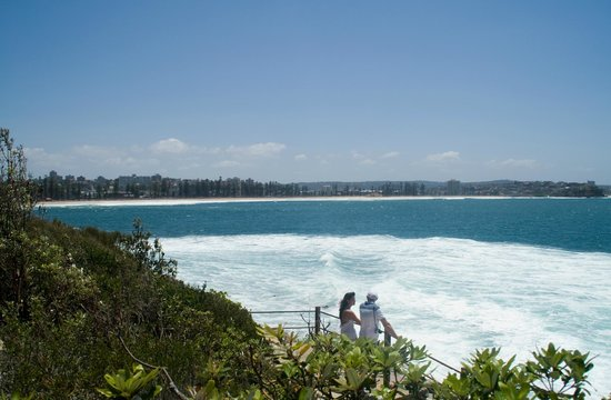 Sydney Harbour National Park:                   Manly from the National Park