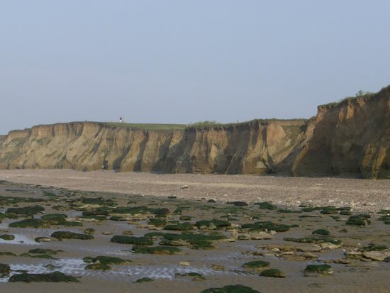 Reculver Country Park:                   Sandstone cliffs and rockpools