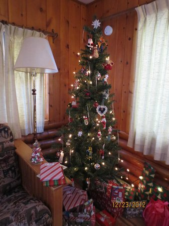 Bearskin Lodge:                   Christmas tree in Cabin #1