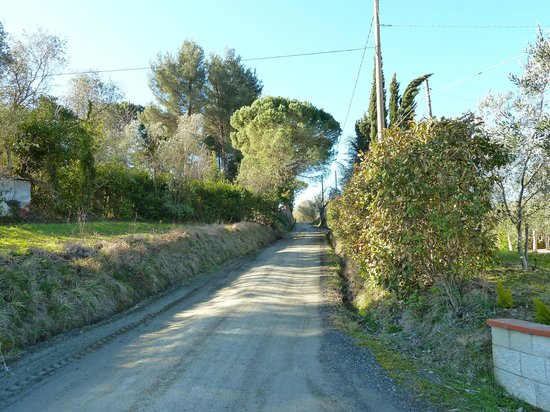 Podere Costantino:                   The street