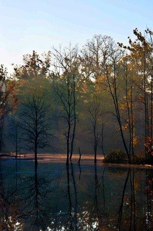 Rocky River Reservation:                   Rocky River