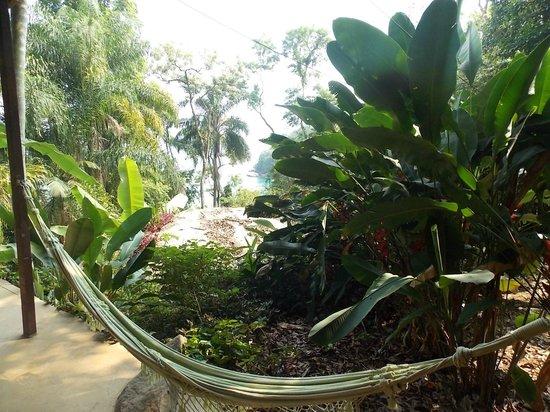 Pousada Lagamar:                   la vista desde la casa