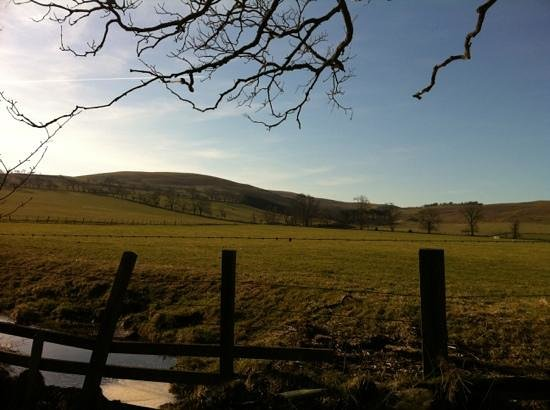 Cheviot Holiday Cottages:                   View from gate