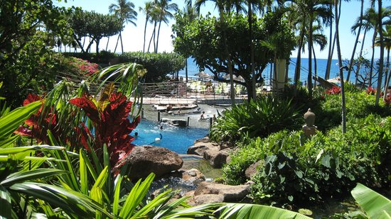 The Westin Maui Resort & Spa:                                     view from the lanai