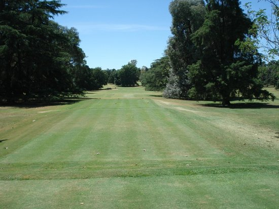 Olivos Golf Club:                   Through this gap the tee shot has to pass
