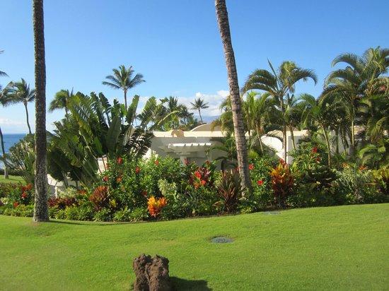 Fairmont Kea Lani, Maui:                   Landscape