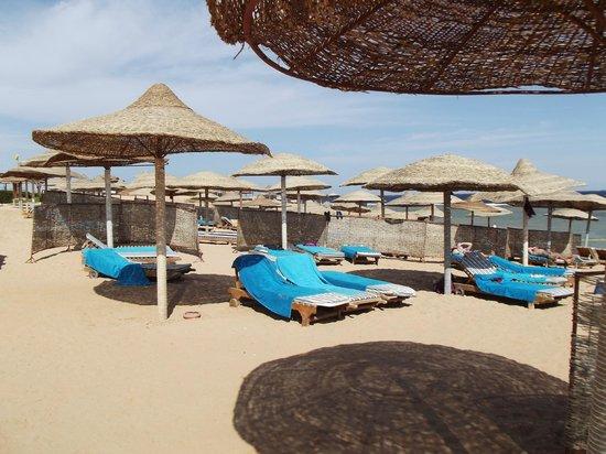 Charmillion Gardens Aqua Park:                                     beach