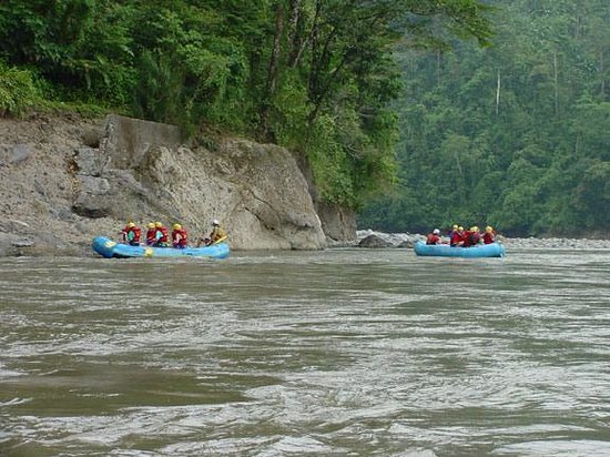 Costa Rica tours Tours and Sightseeing d g