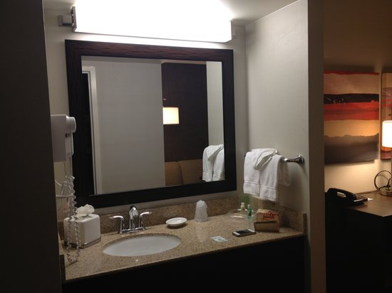 Holiday Inn Newark Airport:                   sink area