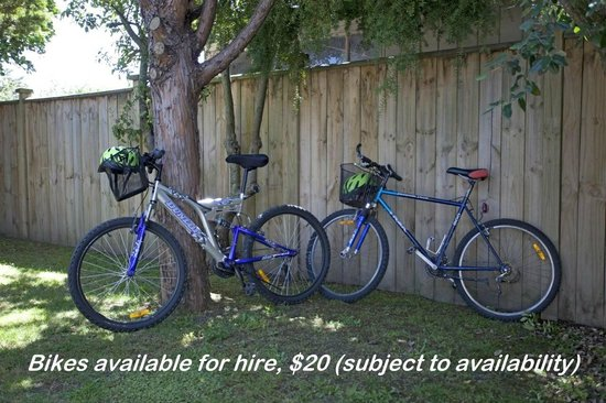 Martinborough Mews: Bikes for hire